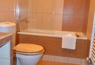 koupelna, bezpečná vana pro děti a sprchová zástěna